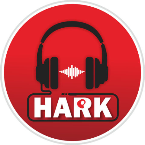 "Hark – Episode 1, ""Election Night"""